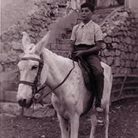 carlos-moro-caballo